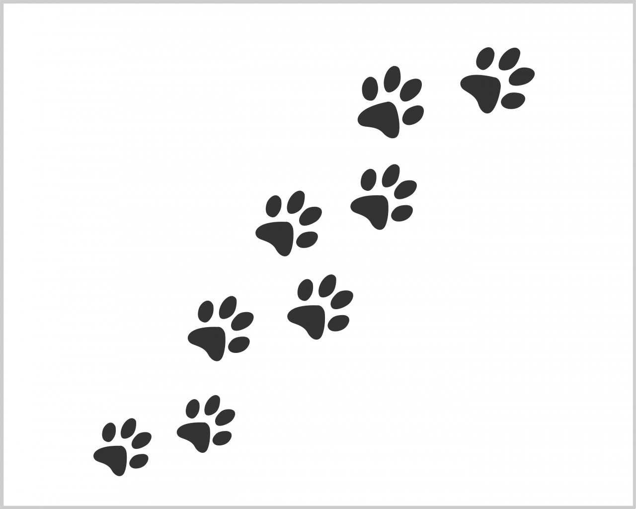 Snow White Wall Stickers Impronte Di Gatto Animali Adesivo Murale Interni