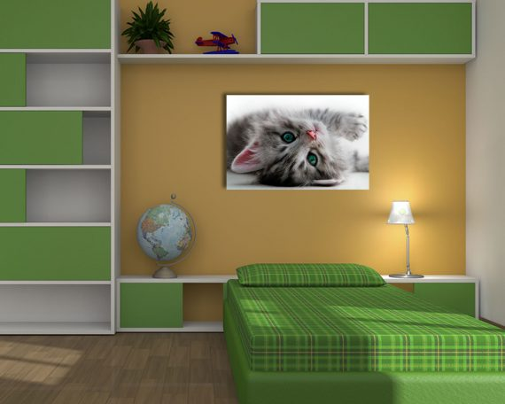 Stampa su tela - Bellissimo gattino