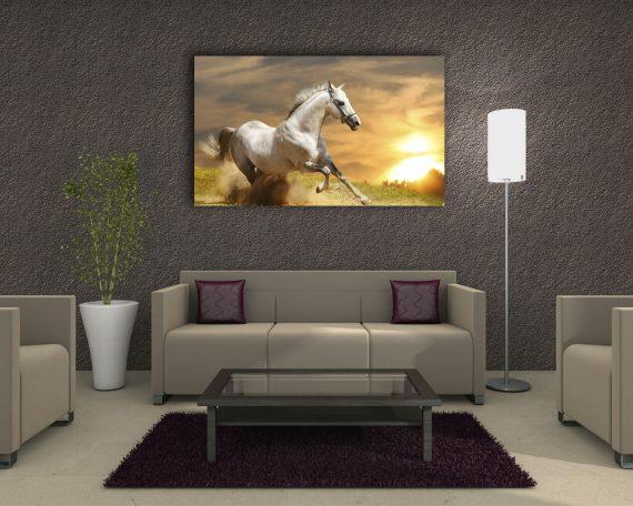 Stampa su tela - Cavallo in corsa