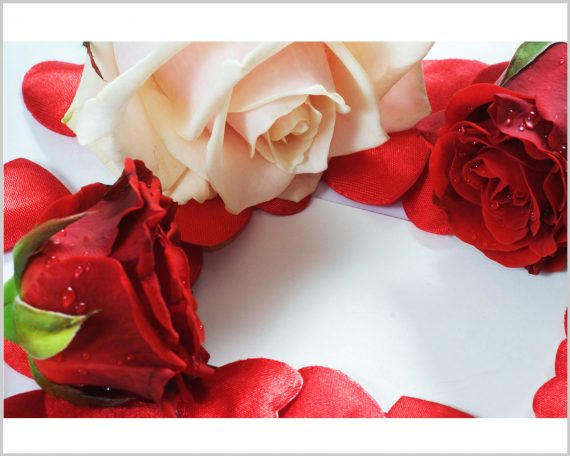 Stampa su tela-rose