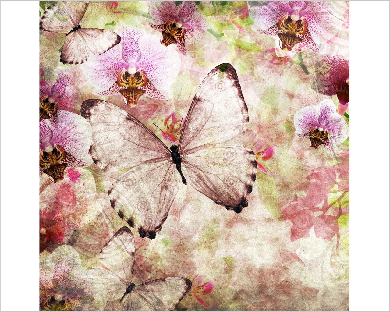 Farfalle vintage e fiori arte stampa su tela interni for Quadri moderni orchidee