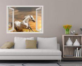 Finestra adesiva-cavallo selvaggio